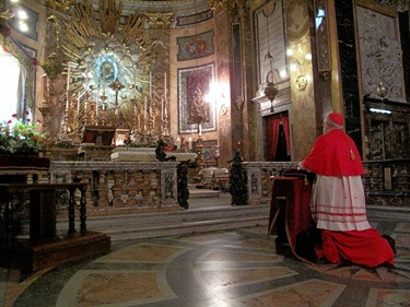 StaMdV-Cardinal In Prayer