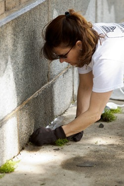 Employees from the acrhdiocese's Pastoral Center help clean and beautify St. Katharine Drexel Parish, May 25, 2011. Pilot photo by Gregory L. Tracy