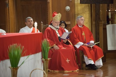 Palm Sunday 2014_00013